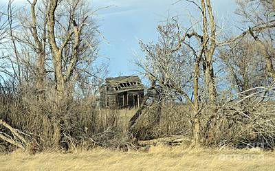Photograph - Plains Derelict by Chalet Roome-Rigdon