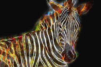 Digital Art - Plains Zebra Artwork by Petrus Bester