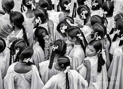 Photograph - Plaits And Bows by Tim Gainey