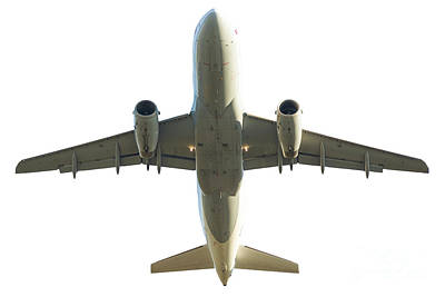Photograph - Plane Isolated On White by Benny Marty