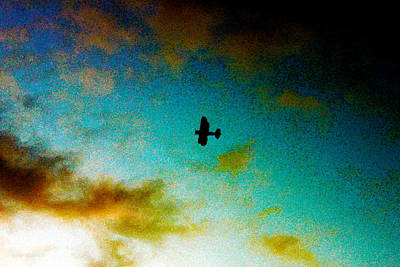 Photograph - Plane Over Key West by Susan Vineyard