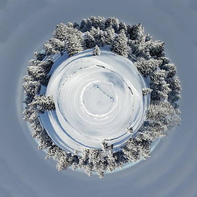 Photograph - Planet Of Fir Tree In Winter, Switzerland by Elenarts - Elena Duvernay photo