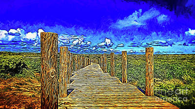 Photograph - Plank Walkway 19918 by Ray Shrewsberry