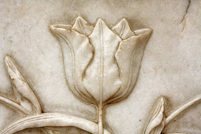 Photograph - Plant Motif On The Taj Mahal by Aidan Moran
