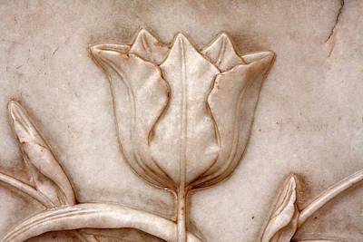 Photograph - Plant Motif Taj Mahal by Aidan Moran