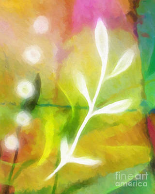 Plant Of Light Art Print by Lutz Baar