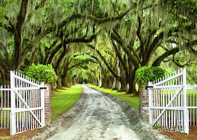 Photograph - Plantation Gate by Sharon Foster