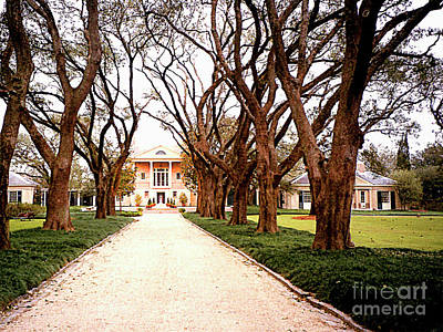 Photograph - Plantation House In New Orleans, Louisiana by Merton Allen