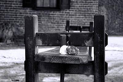 Photograph - Plantation Pastime by Ed Waldrop