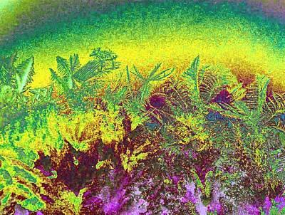 Plantations Digital Art - Plantation by Will Borden