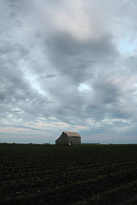 Photograph - Planted Barn by Dylan Punke