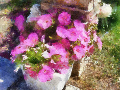 Digital Art - Planter Of Petunias by Donald S Hall