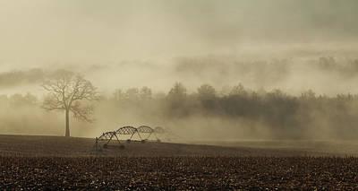 Photograph - Planting Season by Lori Deiter
