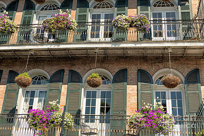Photograph - Plants On Balconies In New Orleans, Usa by Patricia Hofmeester