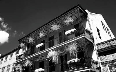 Photograph - Plants On The Balcony Infrared by John Rizzuto