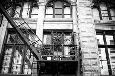 Photograph - Plants On The Fire Escape by John Rizzuto
