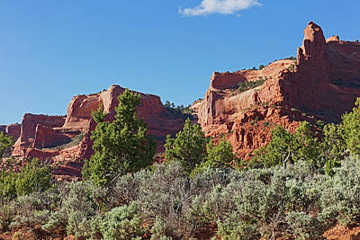 Photograph - Plateau Edge by Tom Daniel