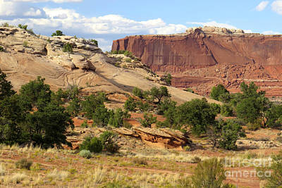 Photograph - Plateau Landscape by Frank Townsley