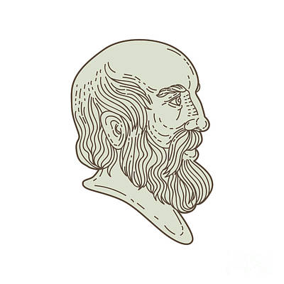 Old Man Digital Art - Plato Greek Philosopher Head Mono Line by Aloysius Patrimonio