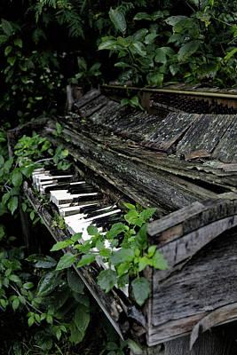 Photograph - Play It Again by CA Johnson