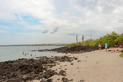 Photograph - Playa De La Estacion On Santa Cruz Island In Galapagos by Marek Poplawski