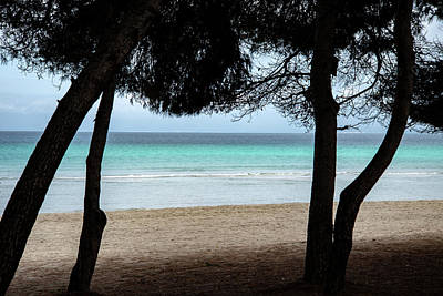 Queen - Playa de Muro bay silhouettesilouette by Mark Burn