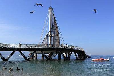 Photograph - Playa Los Muertos Pier by Teresa Zieba