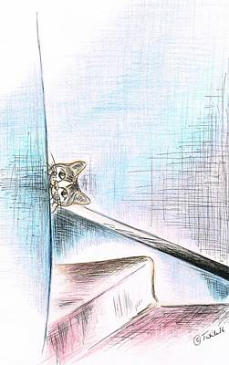 Drawing - Playful Cat by Teresa White