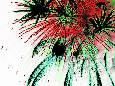Photograph - Playing With Fireworks 20 by Mary Bedy