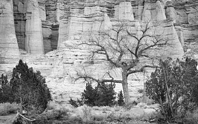 Cliff Lee Photograph - Plaza Blanca New Mexico by Mary Lee Dereske