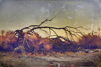 Badlands Digital Art - Pleading For Life by Laurie Search