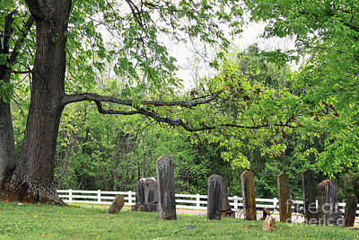 Photograph - Pleasant Forest Cemetery by Todd Blanchard
