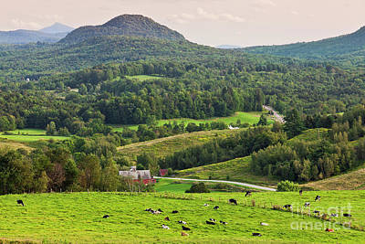 Photograph - Pleasant Valley Countryside by Alan L Graham