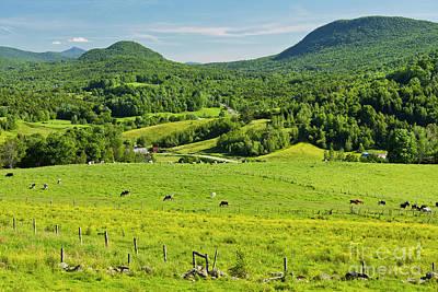 Photograph - Pleasant Valley Pastures by Alan L Graham