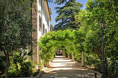Photograph - Pleasant Walkway In Ronda Park by Jenny Rainbow