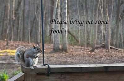 Photograph - Please Bring Me Some Food by Douglas Barnett