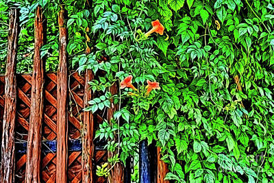 Photograph - Please Enter The Garden Of Peace by Ray Shrewsberry