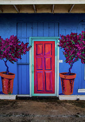 Photograph - Please Use Other Door by Roger Mullenhour