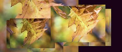 Pleasures Of Autumn -  Art Print
