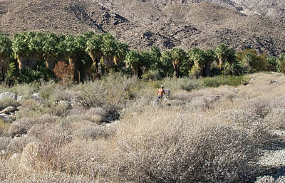 Photograph - Plein Air Painter In The Desert by Frank DiMarco
