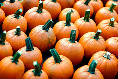 Photograph - Plenty O' Pumpkins by Todd Klassy