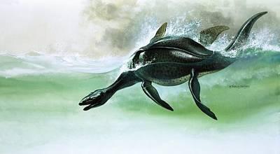 Dinosaur Painting - Plesiosaurus by William Francis Phillipps