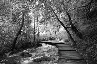 Travel Pics Royalty Free Images - Plitvice in Black and White Royalty-Free Image by Travel Pics
