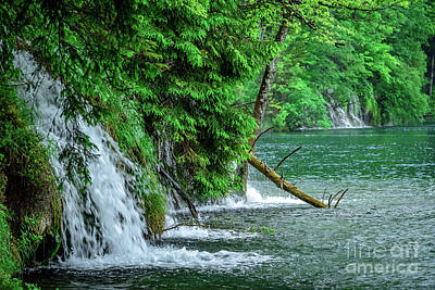Photograph - Plitvice Lakes National Park, Croatia - The Intersection Of Upper And Lower Lakes by Global Light Photography - Nicole Leffer