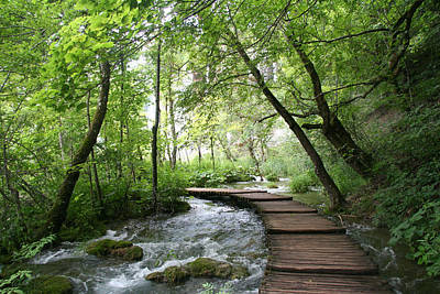 Travel Pics Royalty-Free and Rights-Managed Images - Plitvice Lakes National Park by Travel Pics