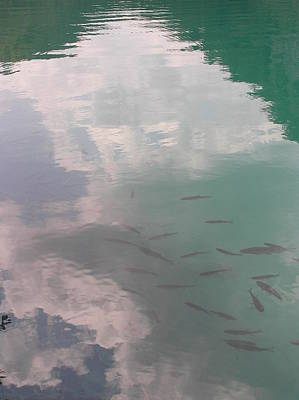 Plitvicelake Art Print