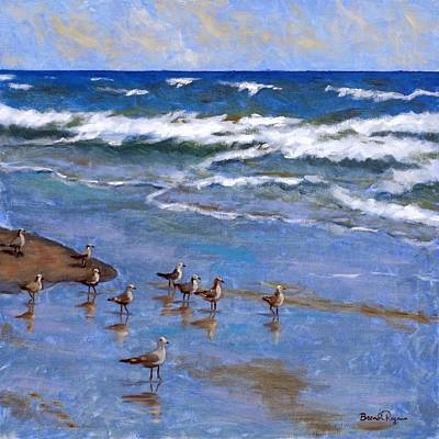 Plover Dance Art Print by Brenda Williams