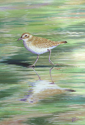 Painting - Plover Reflections by Tish Wynne