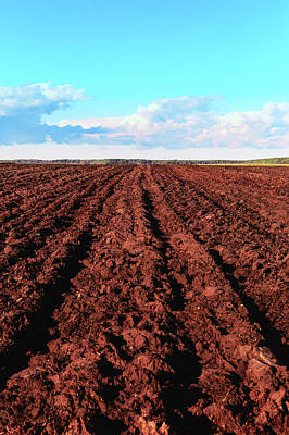 Photograph - Plow Tillage In The Fields - A Sure Sign Of Autumn by George Westermak
