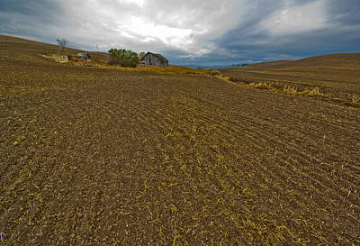 Photograph - Plowed Palouse by Dale Stillman